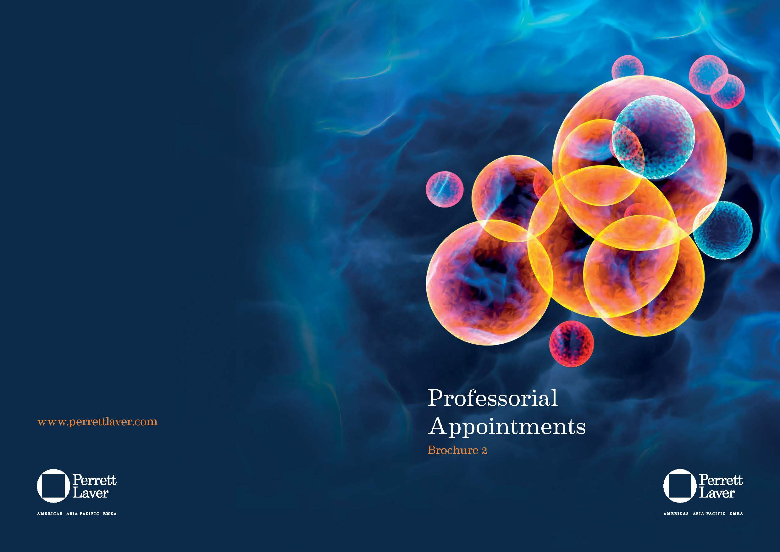 Professorial Appointments Brochure 2